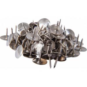 Кнопки канцелярские 100 шт Economix никелир (E41101)
