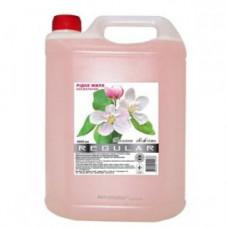 Мыло жидкое 5000 мл Regular (Весенняя свежесть) белое (с глицерином)