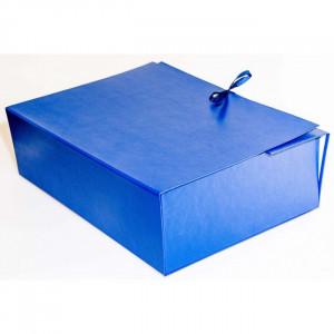 Папка на завязках картон архивная 12 см