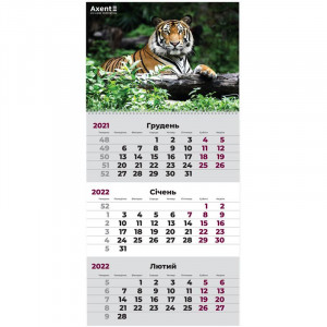 Календарь 2022 квартальный, настенный перекидной, на 1 пружину Axent Тигр (8801-02-a)